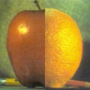 Results of Direct Image Blending Using OpenCV, Gaussian and Laplacian Pyramid