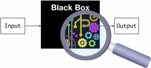 """The Deep Neural Networks are """"black boxes"""""""