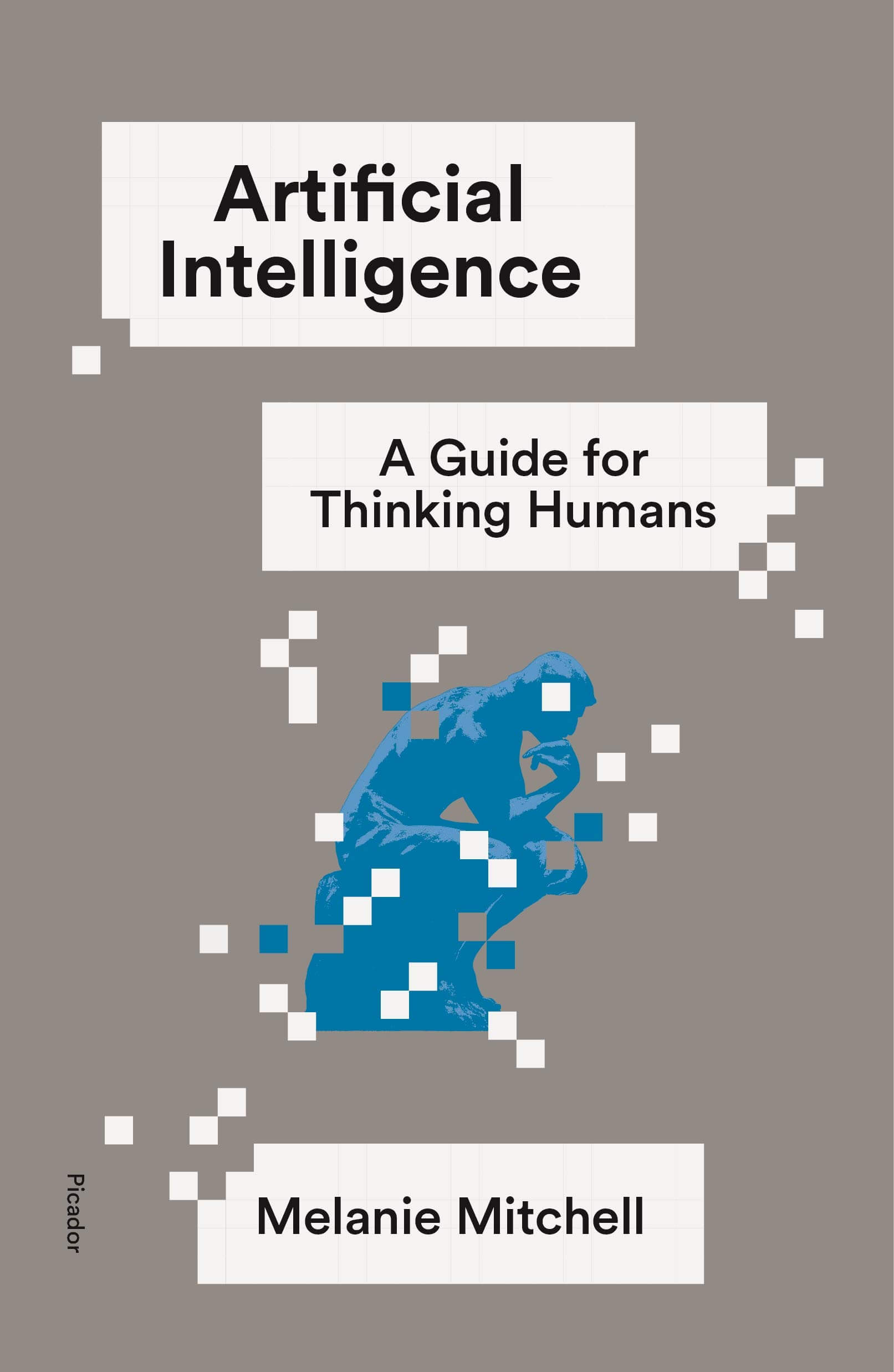 Artificial Intelligence: A Guide for Thinking Humans AI Book